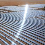 Saudiții dezvoltă puternic curentul ecologic