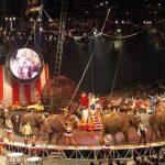 După 146 de ani, cortina Circului Ringling Bros. and Barnum & Bailey coboară pentru ultima oară