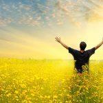 Stiinta despre fericire