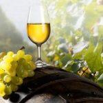 Exporturile de vin, în creștere cu 22% în primele nouă luni din 2016; încasările au crescut cu 35%