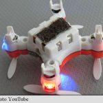 Drone asemănătoare albinelor, o nouă soluție pentru polenizare testată cu succes în Japonia