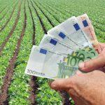 Subventii de 54 mil. euro pentru campania agricola 2015-2016 au incasat primii zece latifundiari romani