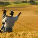 Fermierii români vor putea beneficia de garanții de stat de până la 80% pentru cumpărarea de terenuri