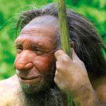 Aspirina ar fi fost descoperită și folosită de oamenii de Neanderthal