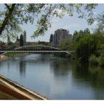 Indicatorii tehnico-economici pentru construirea unui nou pod peste Cris, vor fi supusi la vot