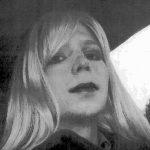 """""""Cârtița"""" WikiLeaks, eliberată din închisoare"""