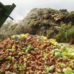 Legea privind diminuarea risipei alimentare în actuala formă este inaplicabilă; normele vor fi prorogate până la 31 decembrie 2017