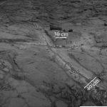 Marte a oferit condiții prietenoase de viață