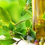 Producția de ulei de măsline a Italiei va atinge cel mai scăzut nivel din ultimele decenii