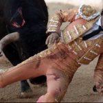 Un toreador spaniol a fost ucis de taur în timpul unei coride după ce s-a împiedicat în ring