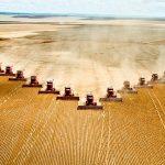 Afacerile din sectorul cerealelor s-au dublat în ultimii 7 ani; profitabilitatea sectorului a crescut de peste 5 ori