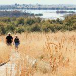O plimbare de o oră, de 3 ori pe săptămână, are beneficii pentru demență
