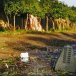 ÎNCĂLZIRE GLOBALĂ Modificările climatice ar putea aduce ploi diluviene în regiunea Sahel
