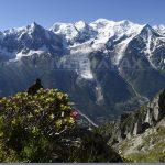 Descoperire macabră după topirea gheţarilor din Alpi: Sunt sute de cadavre mumificate