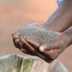 Importurile de Chia vin preponderent din Africa