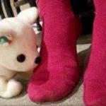 Japonezii au creat un câine-robot care poate detecta… mirosul picioarelor