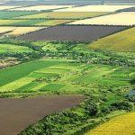 Faptul că 45% din terenurile agricole sunt cumpărate de străini ține de siguranța națională