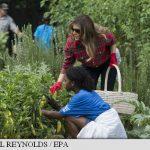 Melania Trump a grădinărit la Casa Albă, preluând o tradiție lansată de Michelle Obama