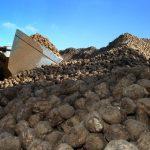 Cota UE pentru zahăr a fost eliminată