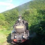 Pe vremea lui Carol al II-lea, un tren de marfă făcea 4 zile de la Curtici la Constanța, astăzi face 7 zile