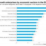 Clasamentul domeniilor în care firmele cresc mult, în UE. România, sub Ungaria și Bulgaria