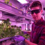 Vor crește legume în Antarctica